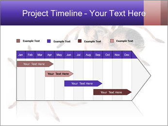 0000061418 PowerPoint Template - Slide 25