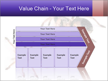0000061418 PowerPoint Template - Slide 27