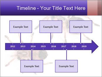 0000061418 PowerPoint Template - Slide 28