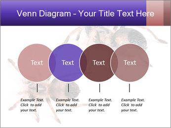 0000061418 PowerPoint Template - Slide 32