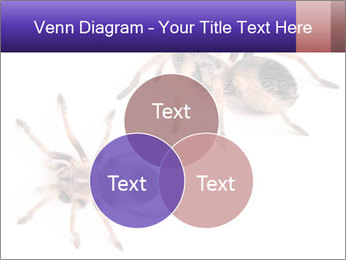 0000061418 PowerPoint Template - Slide 33