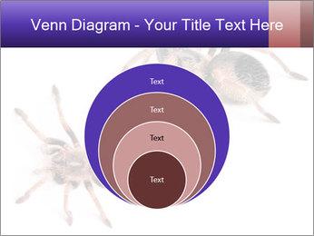 0000061418 PowerPoint Template - Slide 34