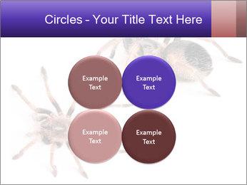 0000061418 PowerPoint Template - Slide 38