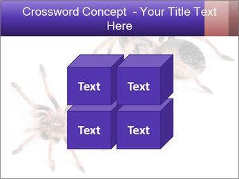 0000061418 PowerPoint Template - Slide 39