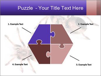 0000061418 PowerPoint Template - Slide 40