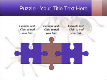 0000061418 PowerPoint Template - Slide 42