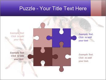 0000061418 PowerPoint Template - Slide 43