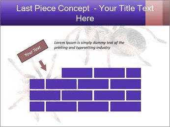 0000061418 PowerPoint Template - Slide 46