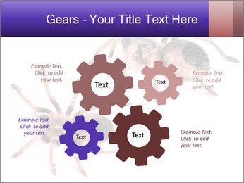 0000061418 PowerPoint Template - Slide 47