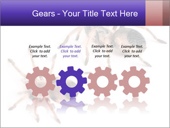 0000061418 PowerPoint Template - Slide 48