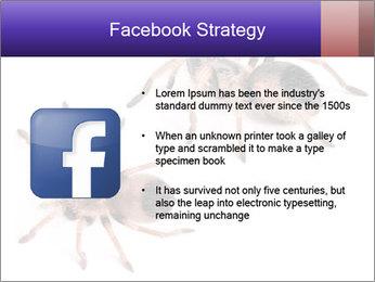 0000061418 PowerPoint Template - Slide 6