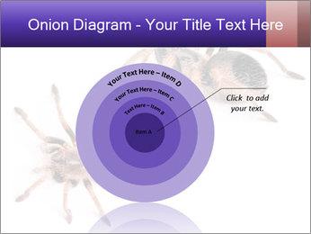 0000061418 PowerPoint Template - Slide 61