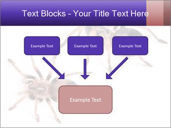 0000061418 PowerPoint Template - Slide 70