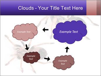 0000061418 PowerPoint Template - Slide 72