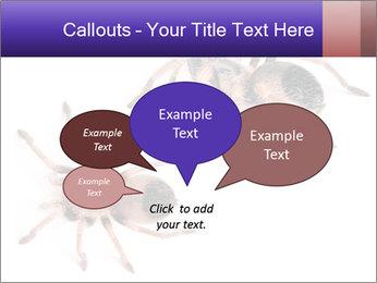 0000061418 PowerPoint Template - Slide 73