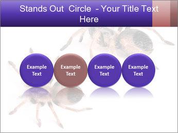0000061418 PowerPoint Template - Slide 76