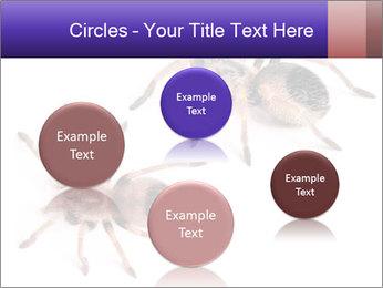 0000061418 PowerPoint Template - Slide 77