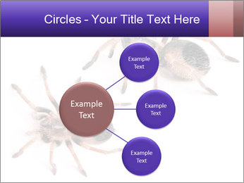 0000061418 PowerPoint Template - Slide 79