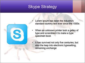0000061418 PowerPoint Template - Slide 8