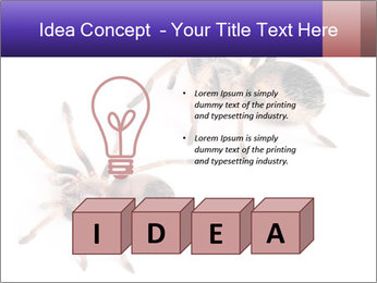 0000061418 PowerPoint Template - Slide 80