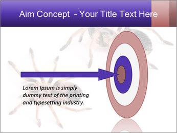 0000061418 PowerPoint Template - Slide 83