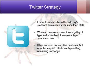 0000061418 PowerPoint Template - Slide 9