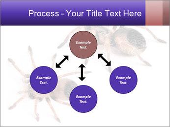0000061418 PowerPoint Template - Slide 91