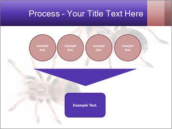 0000061418 PowerPoint Template - Slide 93
