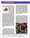 0000061418 Word Template - Page 3