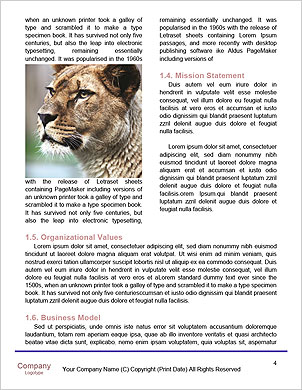 0000061418 Word Template - Page 4