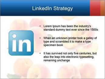 0000061419 PowerPoint Templates - Slide 12