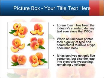 0000061419 PowerPoint Templates - Slide 13