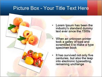 0000061419 PowerPoint Templates - Slide 17