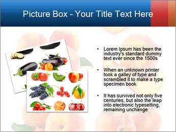 0000061419 PowerPoint Templates - Slide 20