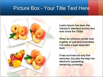 0000061419 PowerPoint Templates - Slide 23