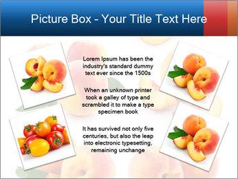 0000061419 PowerPoint Templates - Slide 24