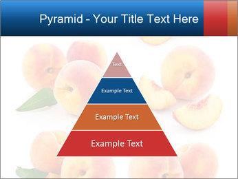 0000061419 PowerPoint Templates - Slide 30
