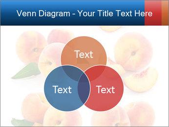 0000061419 PowerPoint Templates - Slide 33