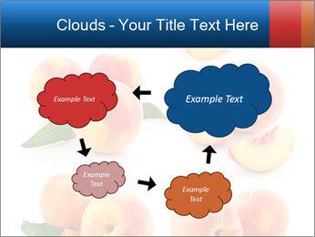 0000061419 PowerPoint Templates - Slide 72