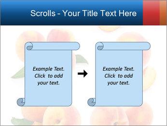 0000061419 PowerPoint Templates - Slide 74