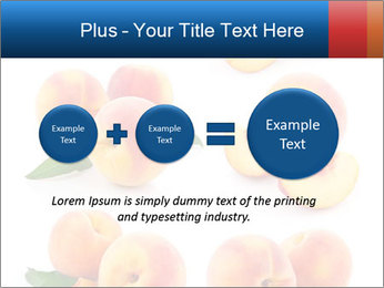 0000061419 PowerPoint Templates - Slide 75