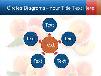0000061419 PowerPoint Templates - Slide 78