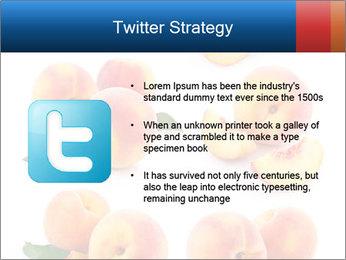 0000061419 PowerPoint Templates - Slide 9