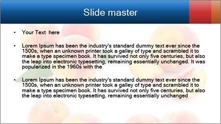 0000061419 PowerPoint Template - Slide 2