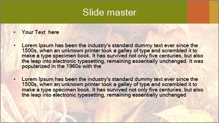 0000061422 PowerPoint Template - Slide 2