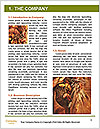 0000061422 Word Template - Page 3