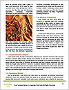 0000061422 Word Template - Page 4