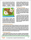 0000061429 Word Template - Page 4