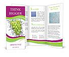 0000061433 Brochure Templates