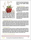0000061437 Word Template - Page 4